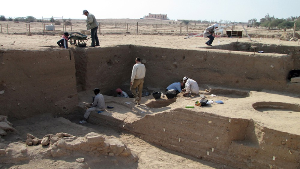 Fig. 2 : la fouille dans les niveaux du Bronze moyen entre le temple et le « Palais » sur le tell F6, par la Kuwaiti-Danish Archaeological Mission in Failaka (photo H. David-Cuny 2009)